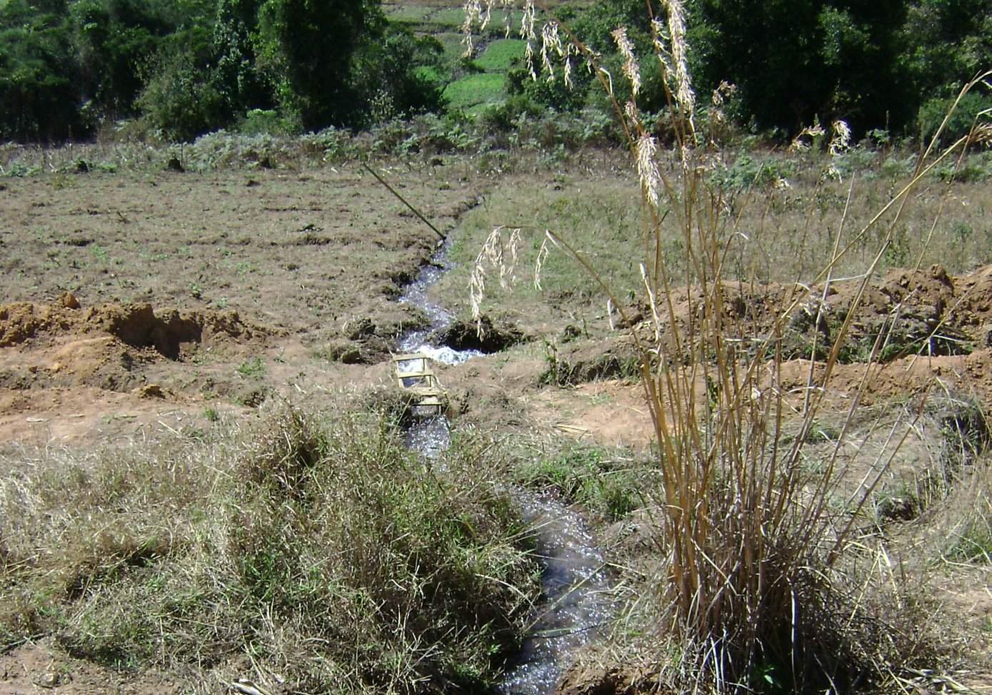 Irrigation water crosses the trench by a small wood aquaduct